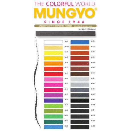 Rajzkréta Artist Drawing Pastel Mungyo solo