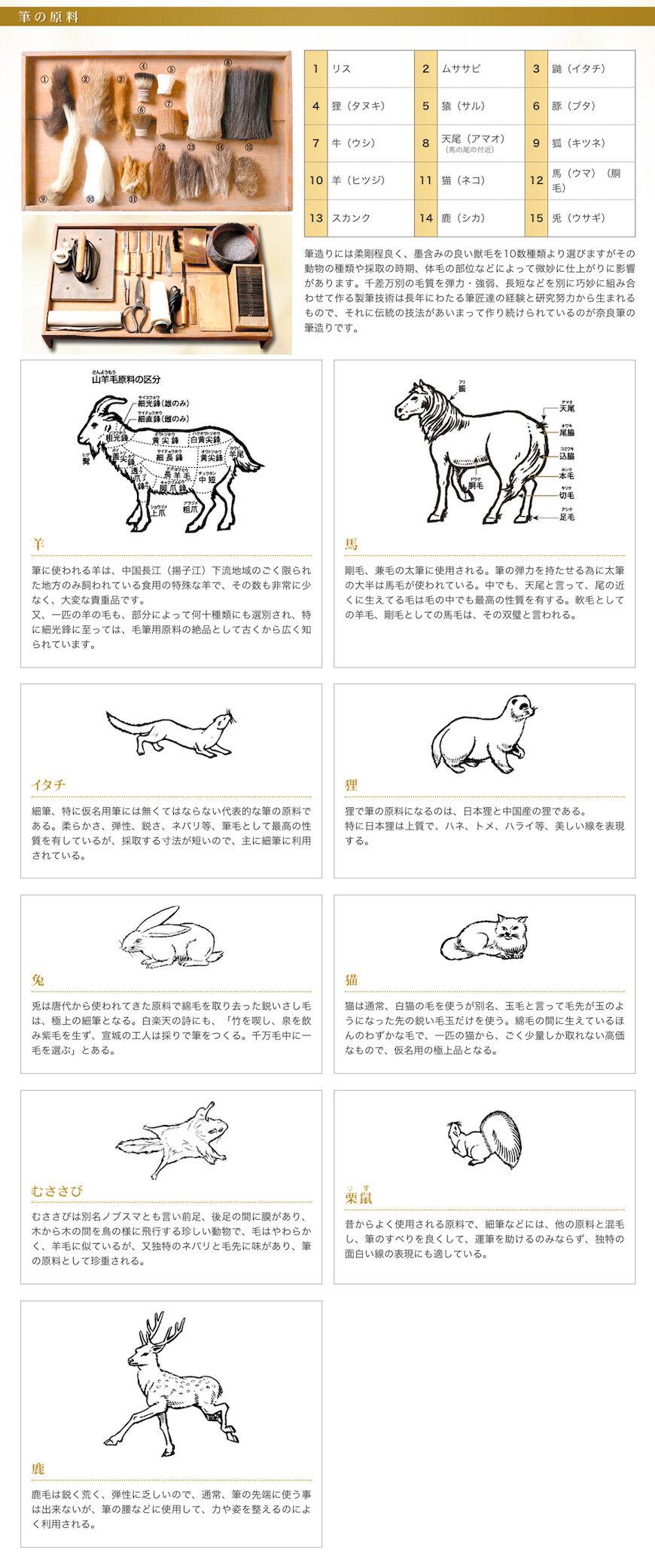 A felhasznált állatszőrök sokfélesége.